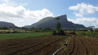 Land for sale in Quatre-bornes